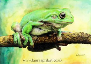 Wildlife Artwork - Buy online