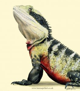 An Australian water dragon painted and drawn for a wildlife conservation exhibition charity fundraiser, reptile art